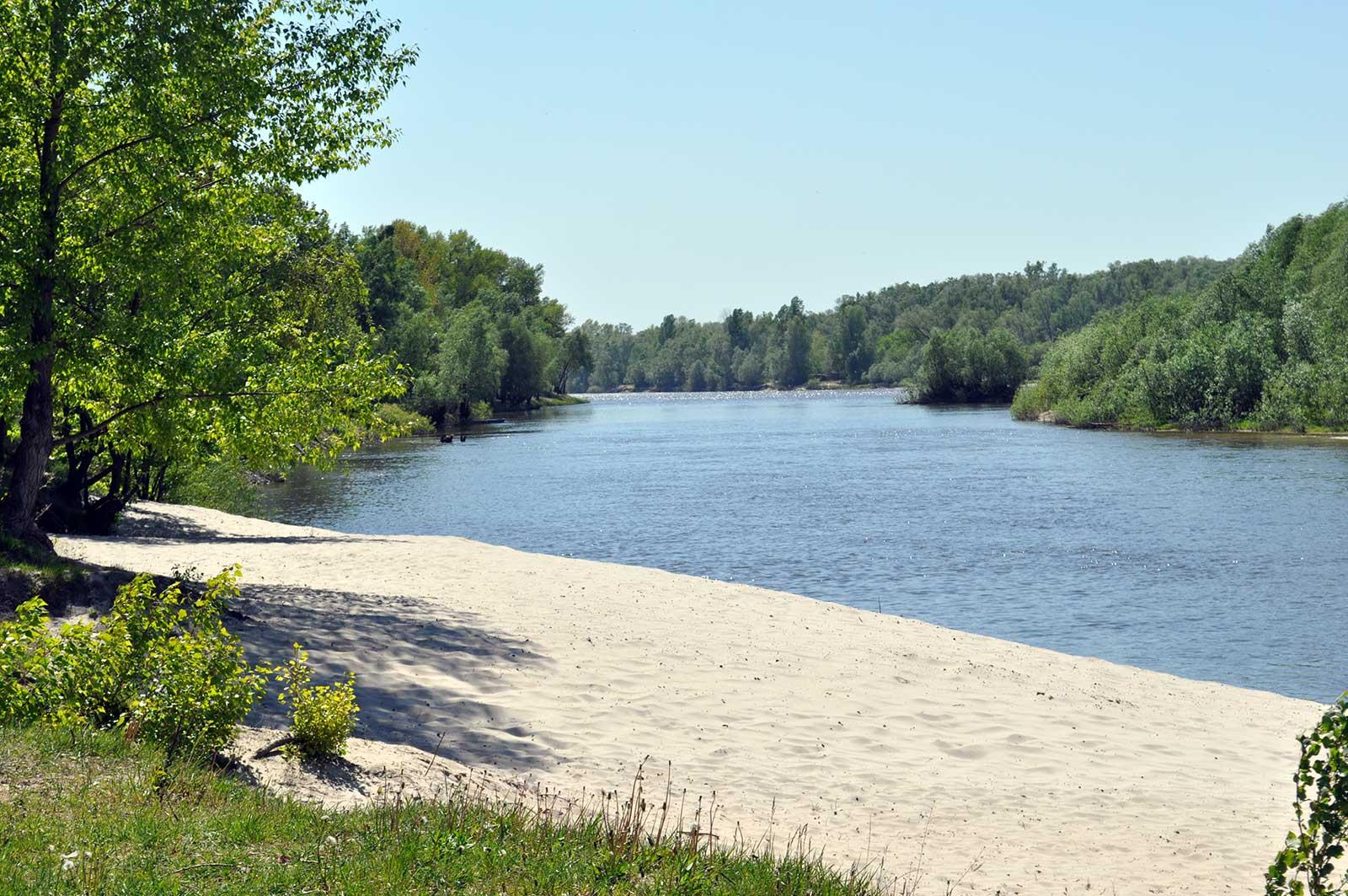 Фото река природа